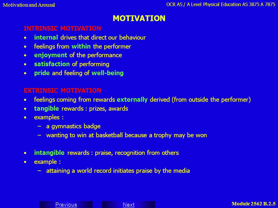 MOTIVATION INTRINSIC MOTIVATION