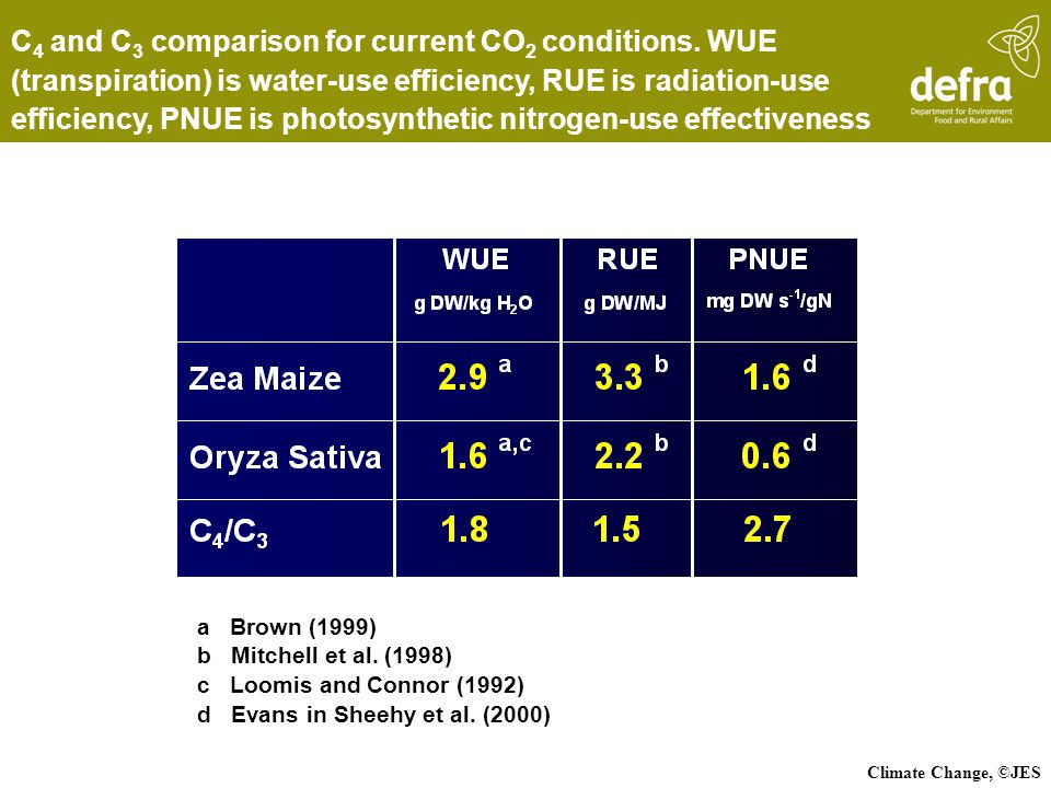 C4 and C3 comparison for current CO2 conditions