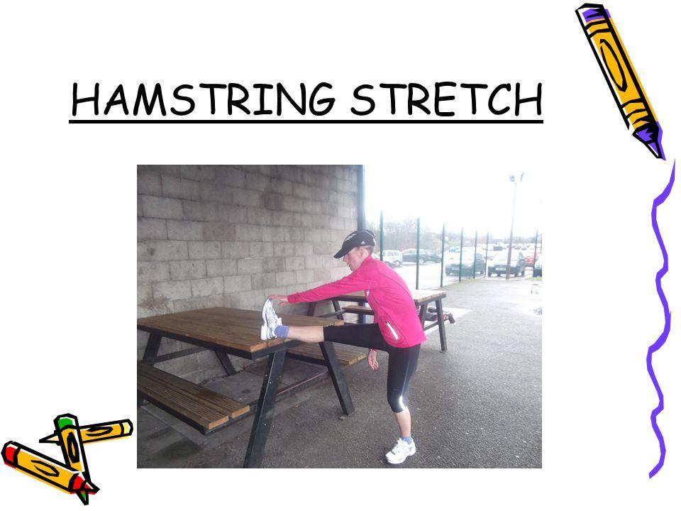 HAMSTRING STRETCH HAMSTRING STRETCH