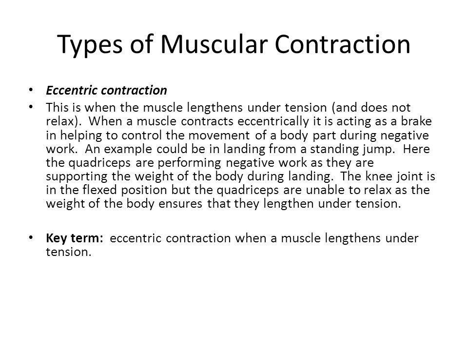 Types of Muscular Contraction