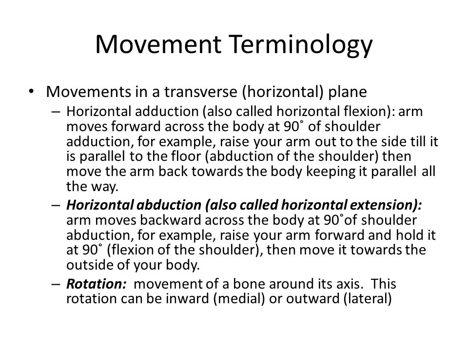 Movement Terminology Movements in a transverse (horizontal) plane