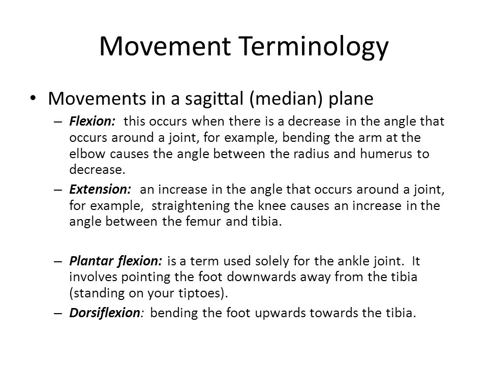 Movement Terminology Movements in a sagittal (median) plane