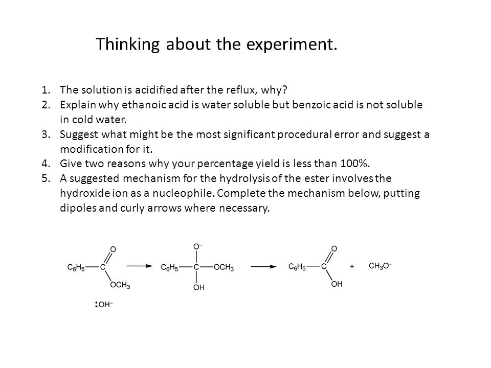 Thinking about the experiment.