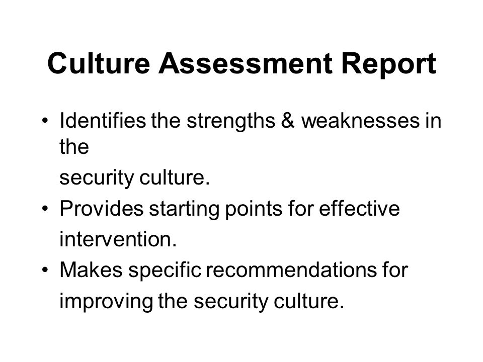 Culture Assessment Report