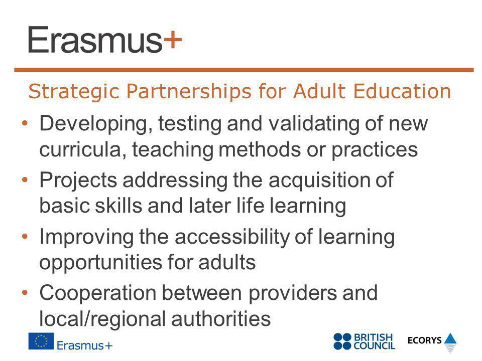 Strategic Partnerships for Adult Education