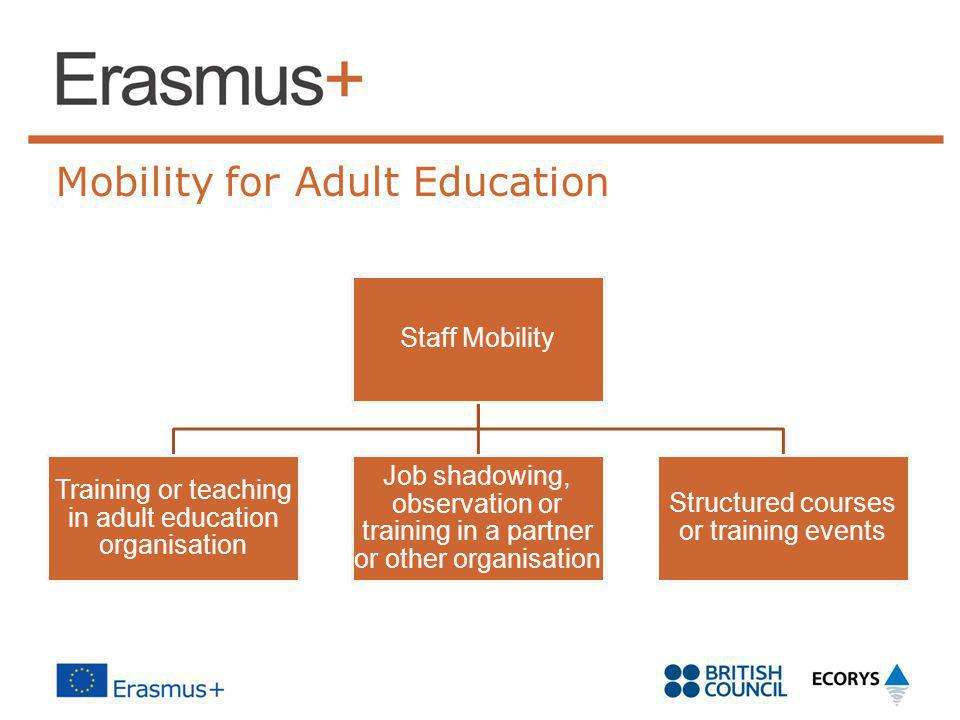 Mobility for Adult Education