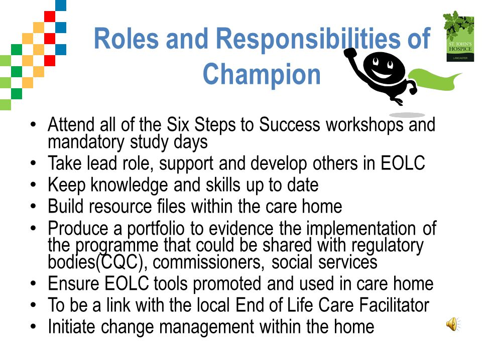 Roles and Responsibilities of Champion
