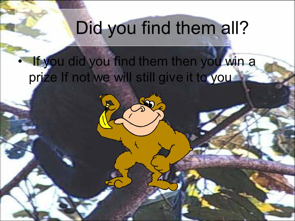 Did you find them all.