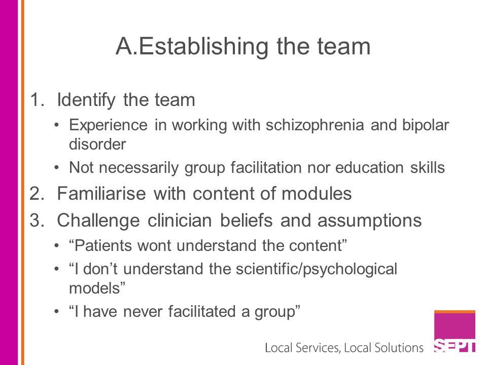 A.Establishing the team