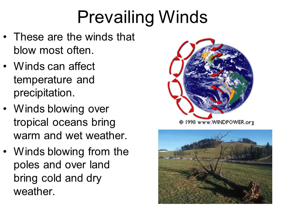 Prevailing Winds These are the winds that blow most often.