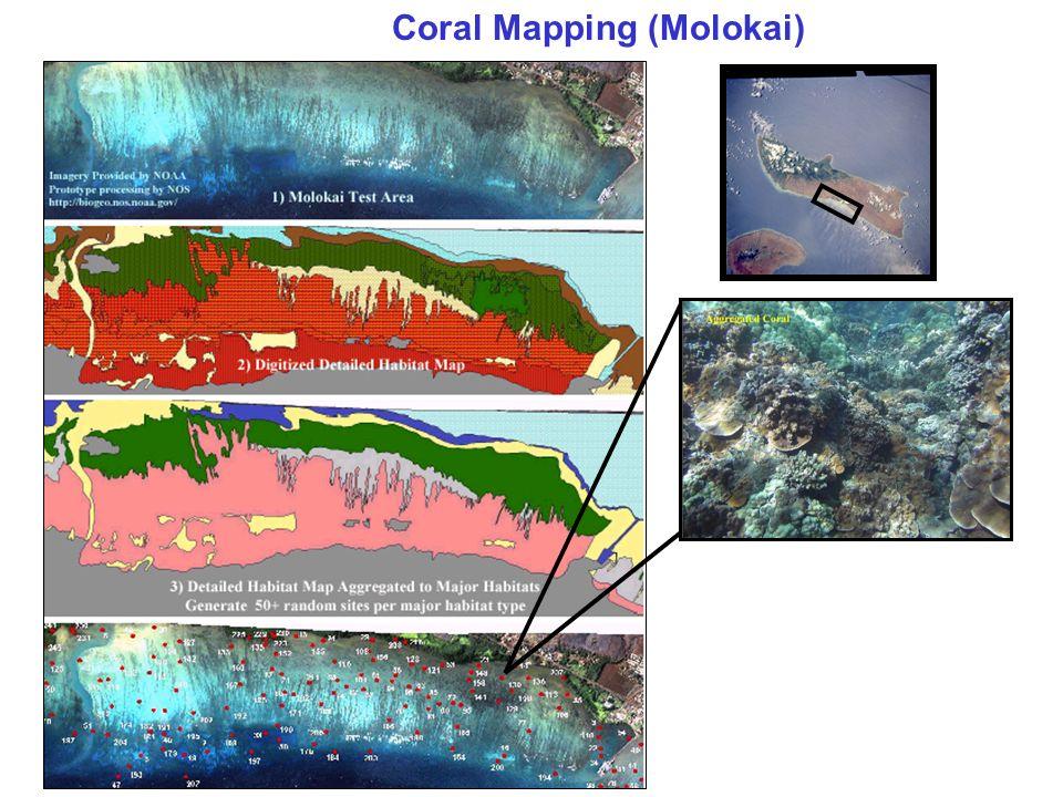 Coral Mapping (Molokai)