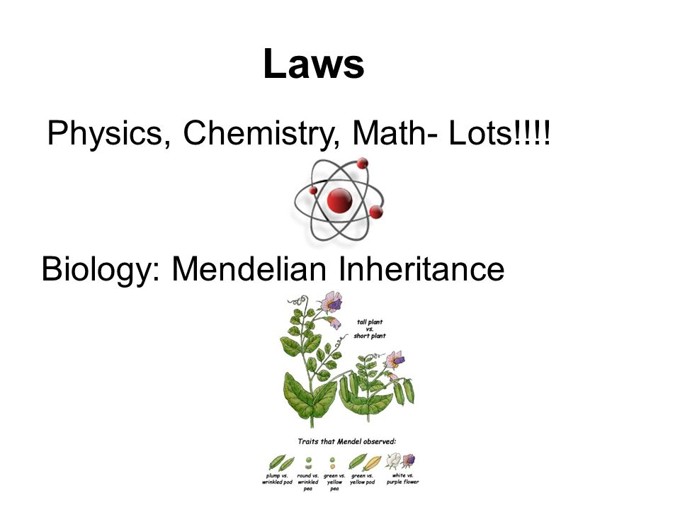 Laws Physics, Chemistry, Math- Lots!!!! Biology: Mendelian Inheritance