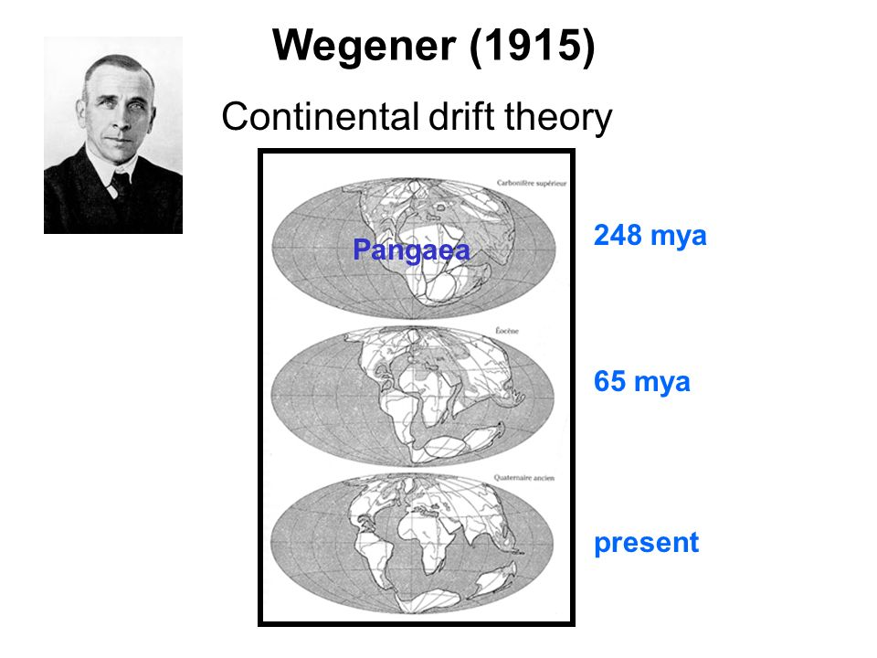 Wegener (1915) Continental drift theory 248 mya Pangaea 65 mya present