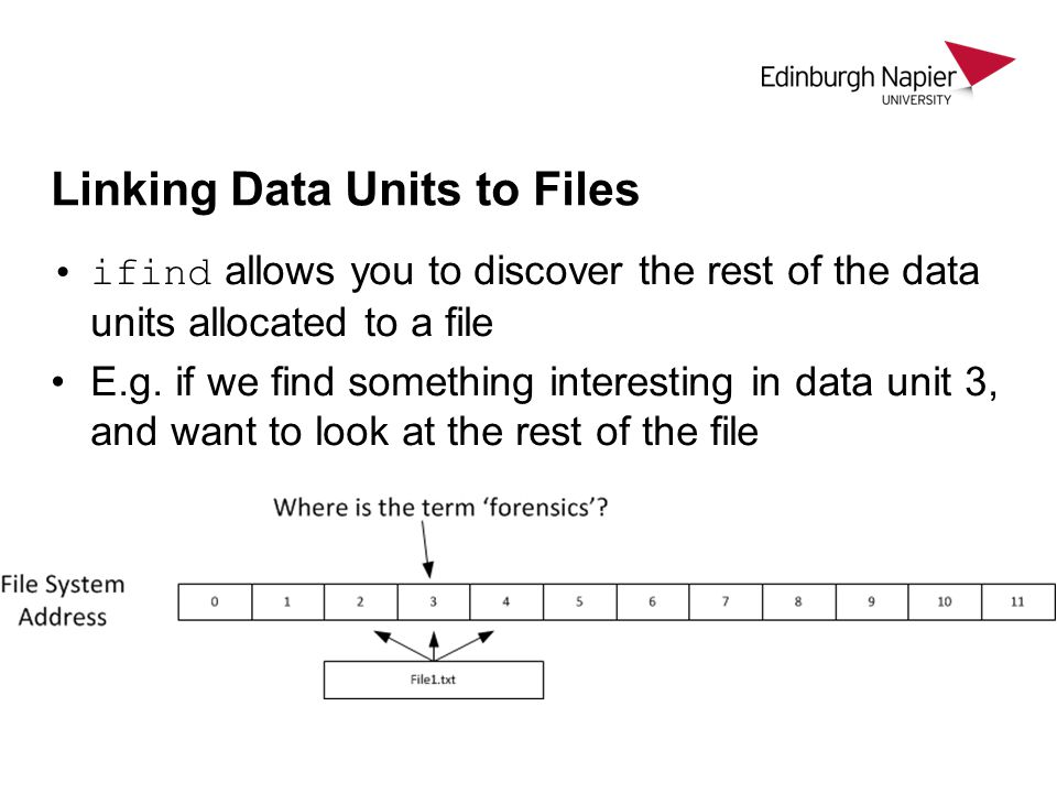 Linking Data Units to Files
