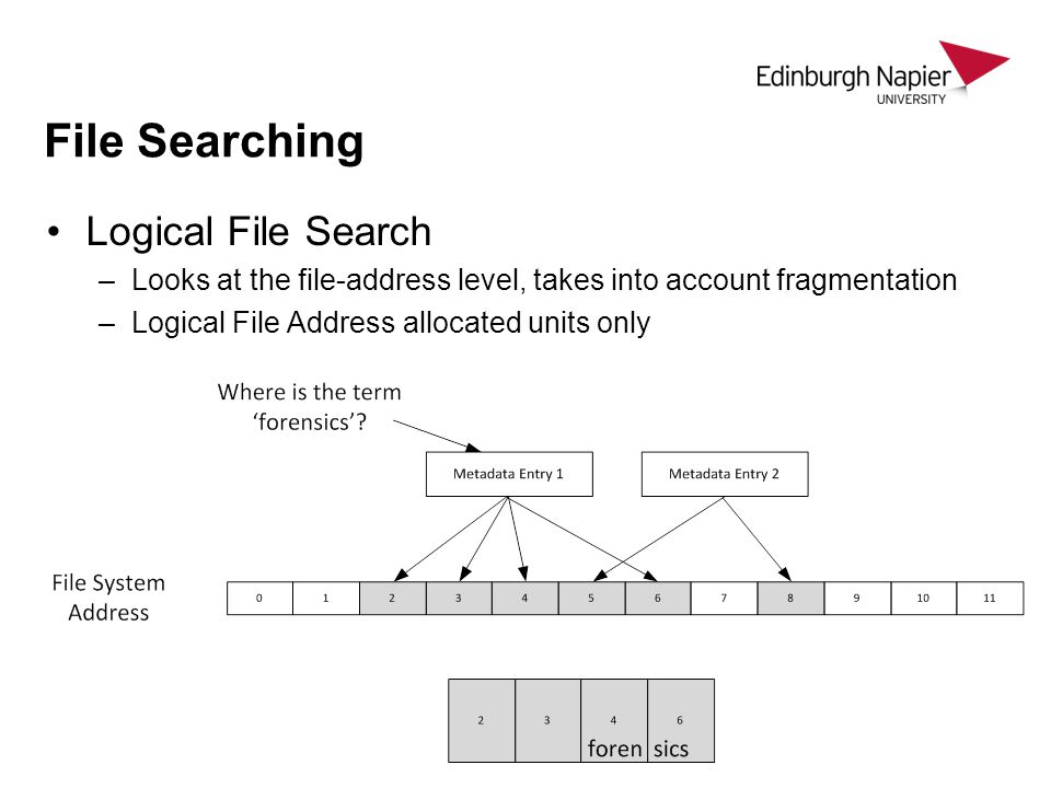File Searching Logical File Search