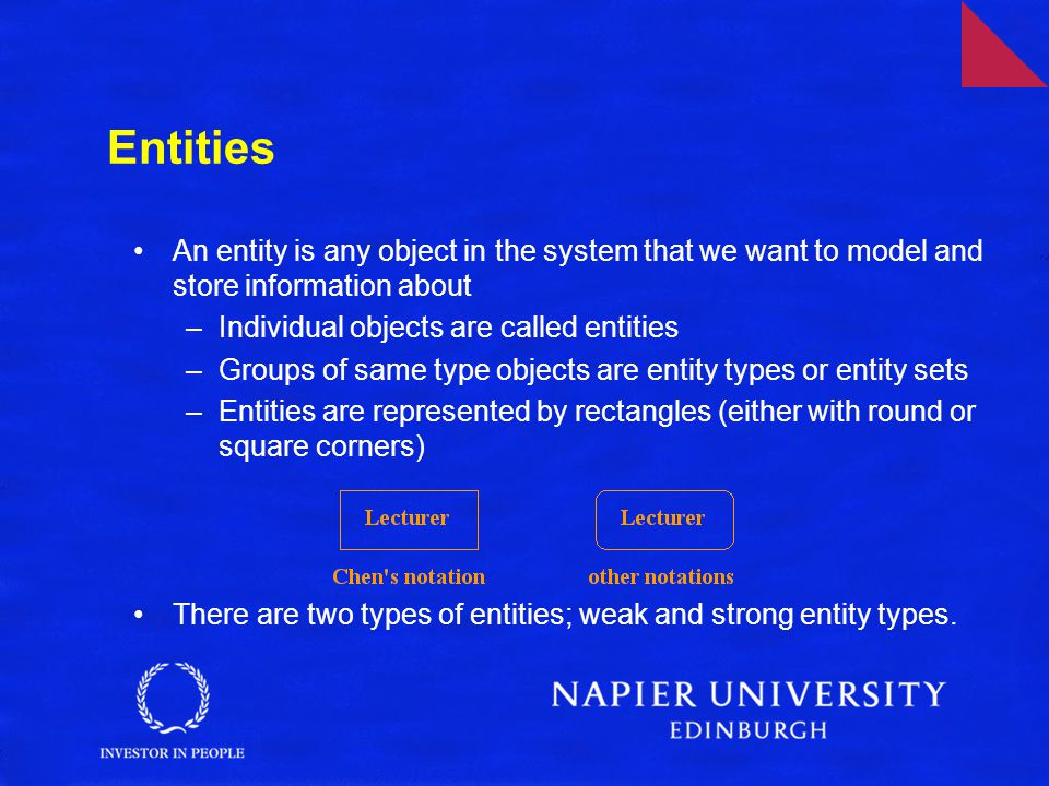 Entities An entity is any object in the system that we want to model and store information about. Individual objects are called entities.
