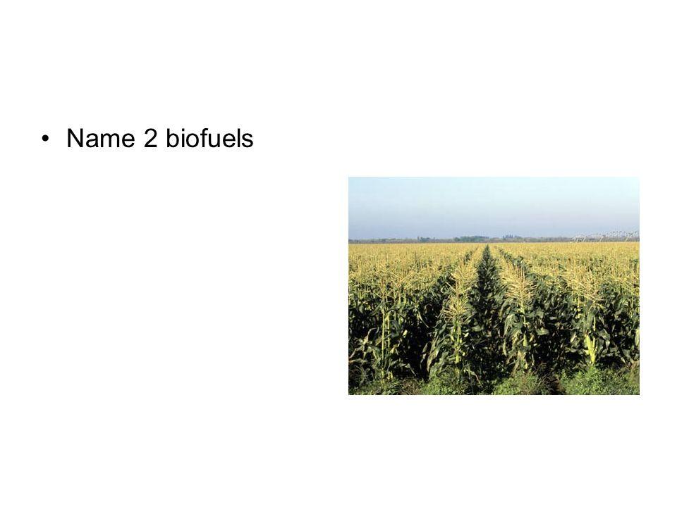 Name 2 biofuels
