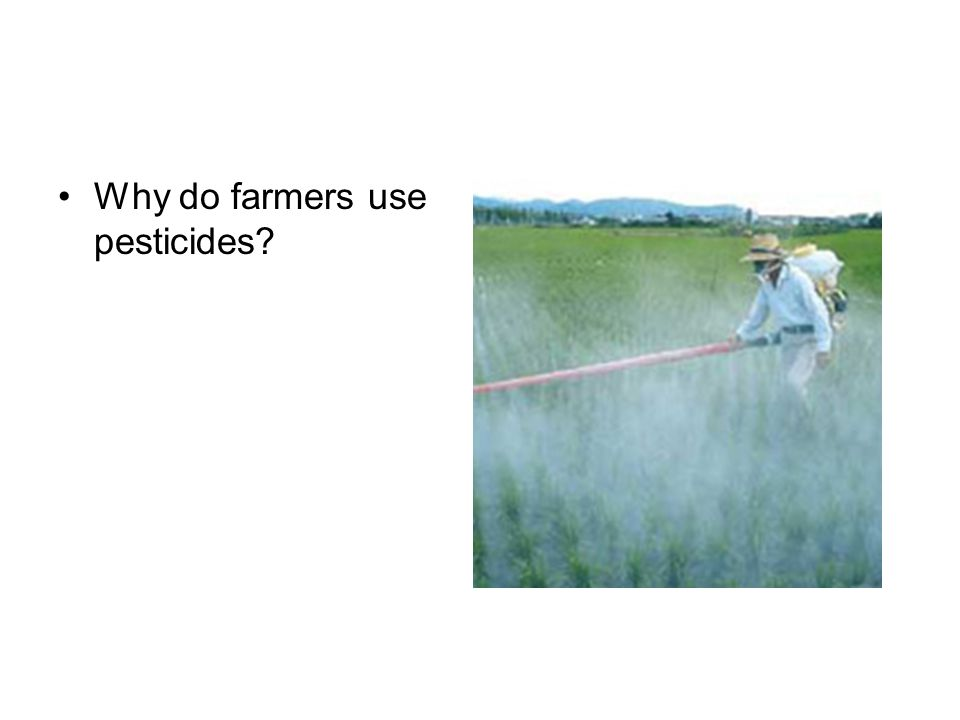 Why do farmers use pesticides