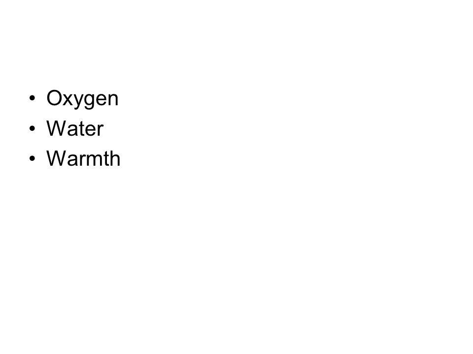 Oxygen Water Warmth