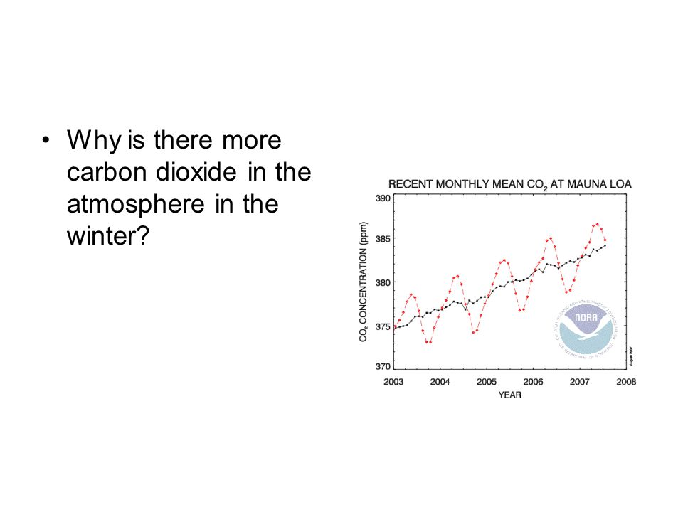 Why is there more carbon dioxide in the atmosphere in the winter