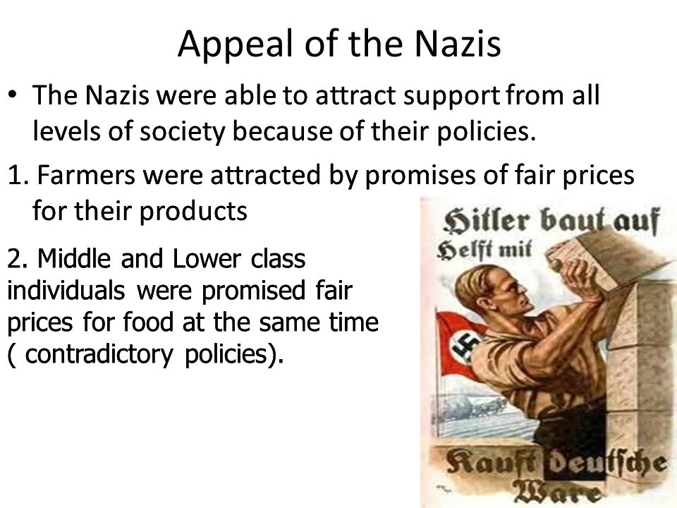 Appeal of the Nazis The Nazis were able to attract support from all levels of society because of their policies.