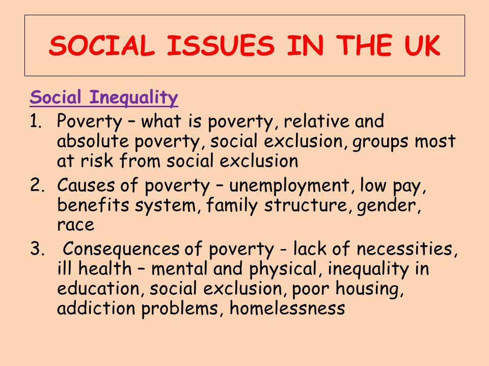 SOCIAL ISSUES IN THE UK Social Inequality