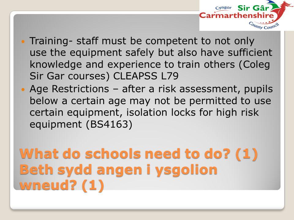 What do schools need to do (1) Beth sydd angen i ysgolion wneud (1)