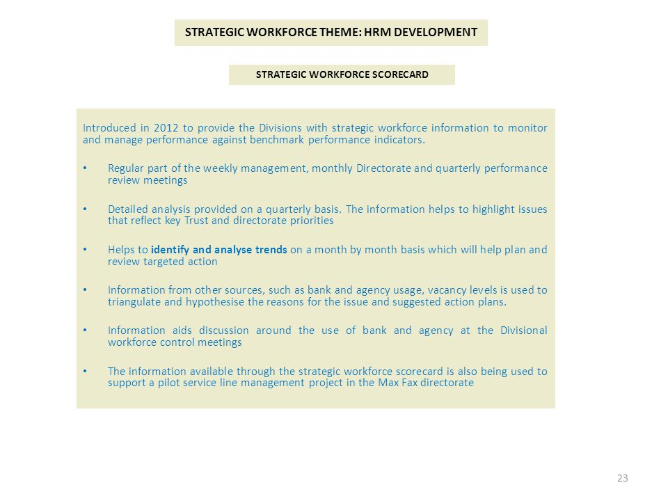 STRATEGIC WORKFORCE THEME: HRM DEVELOPMENT