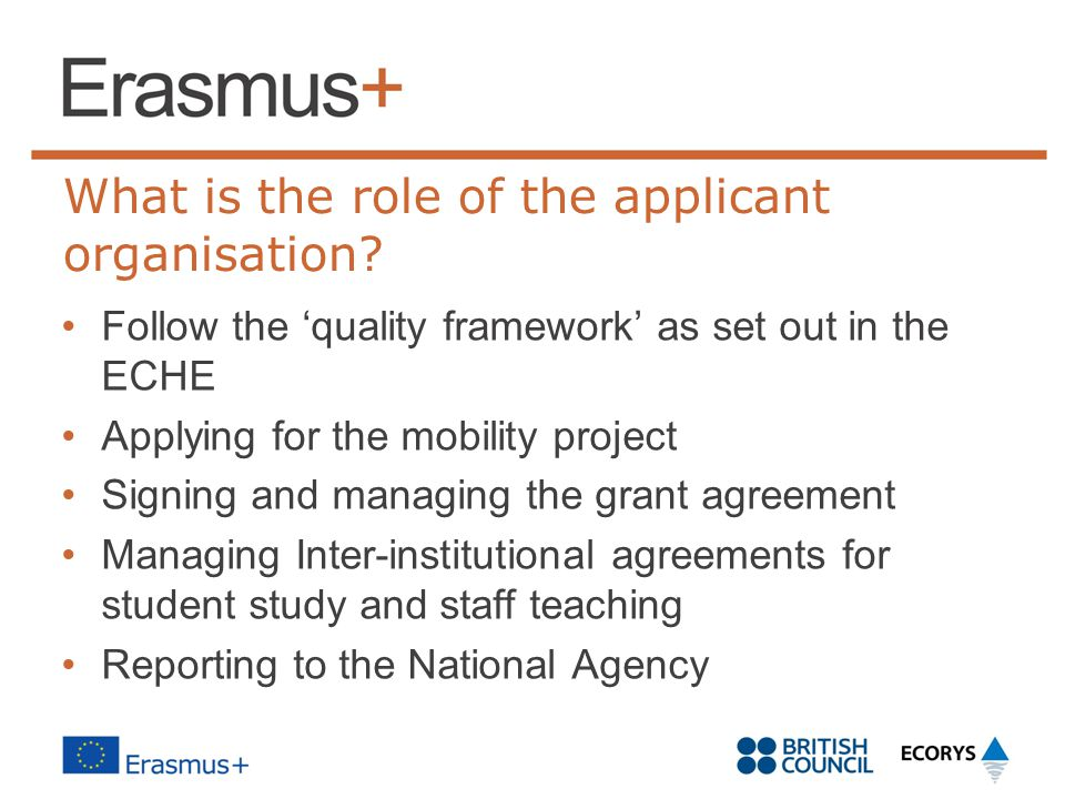 What is the role of the applicant organisation