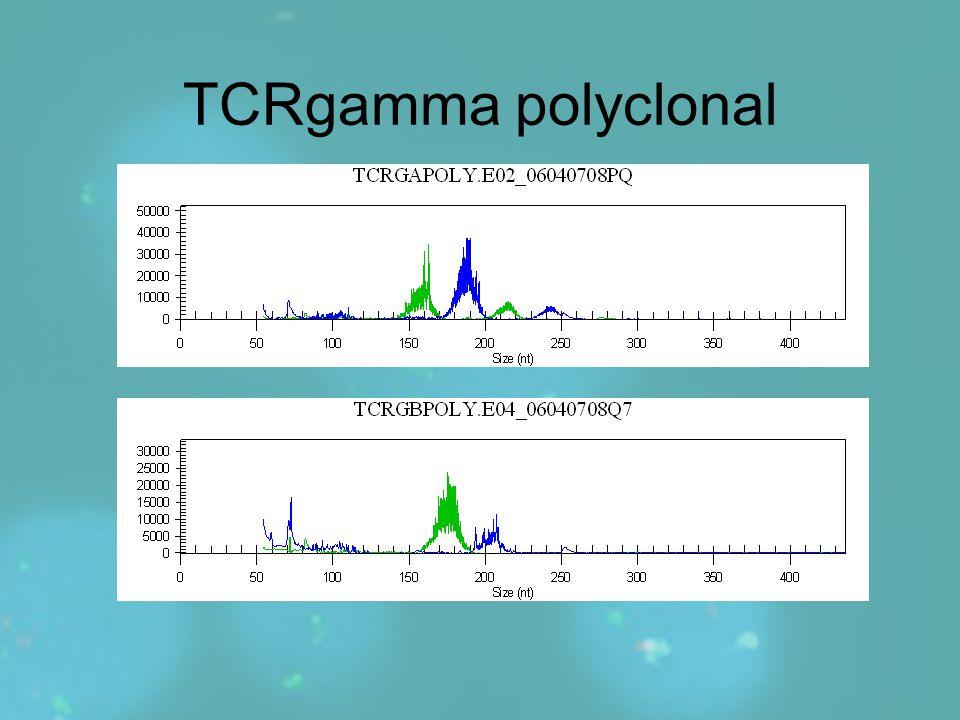 TCRgamma polyclonal