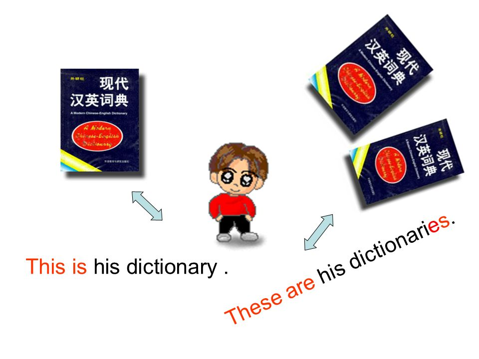 These are his dictionaries.
