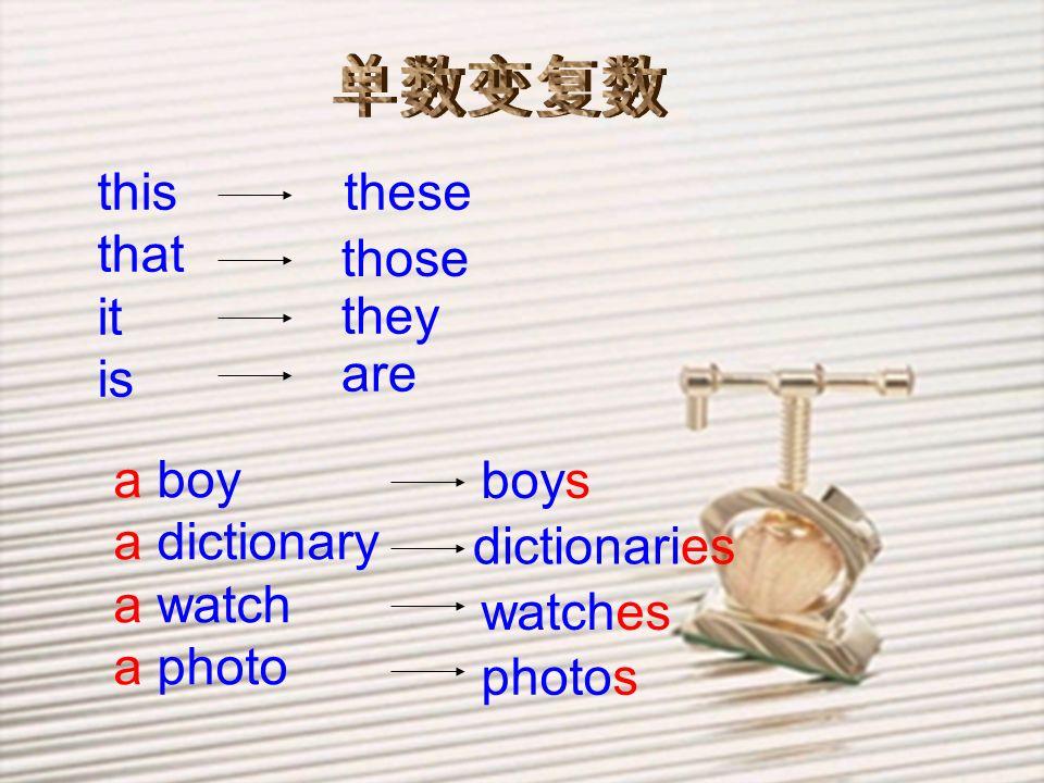 单数变复数 this. that. it. is. these. those. they. are. a boy. a dictionary. a watch. a photo.