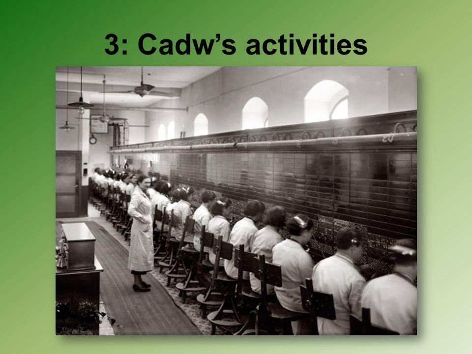 3: Cadw's activities