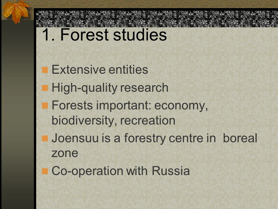 1. Forest studies Extensive entities High-quality research