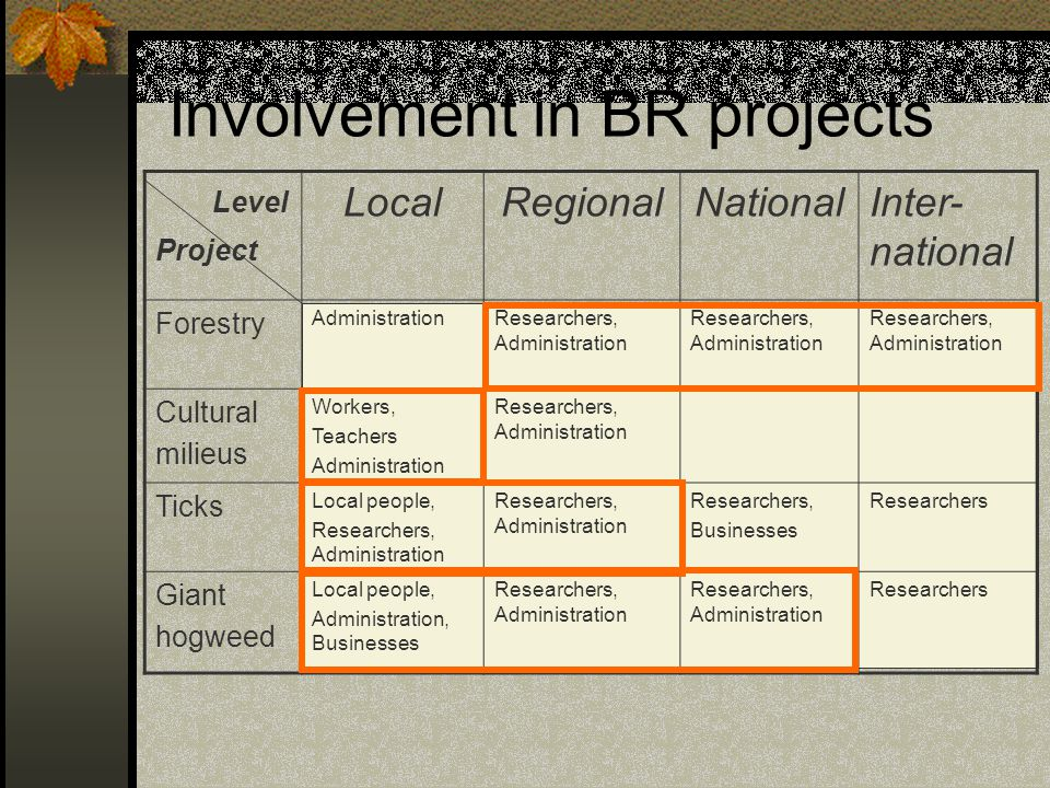 Involvement in BR projects
