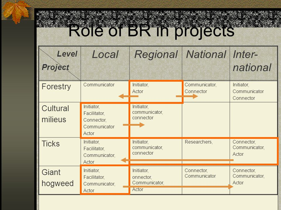 Role of BR in projects Local Regional National Inter-national Project