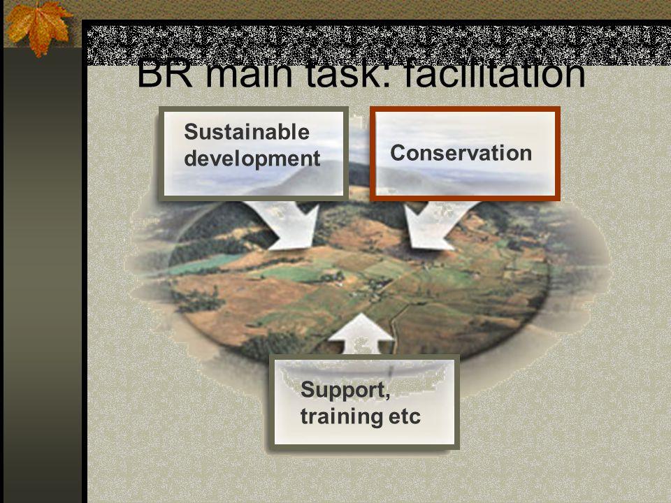 BR main task: facilitation