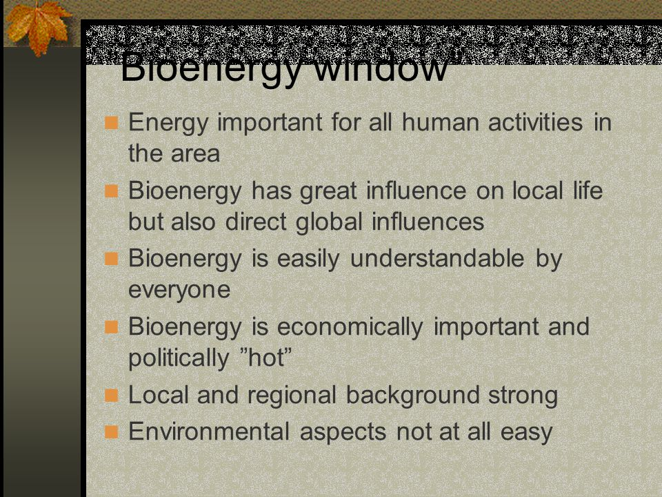 Bioenergy window Energy important for all human activities in the area.
