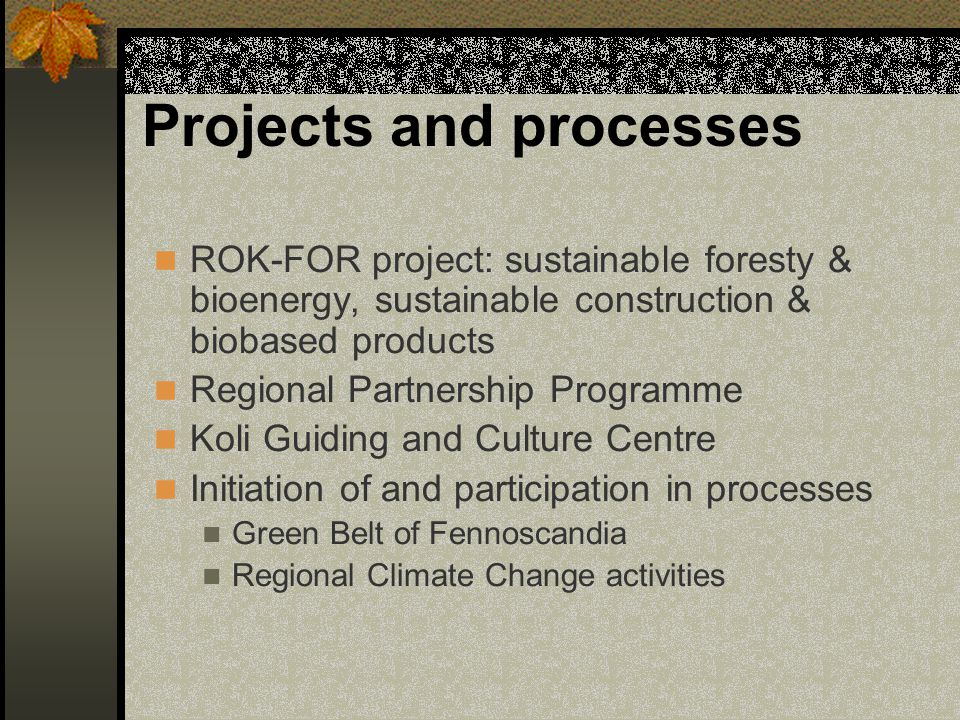 Projects and processes