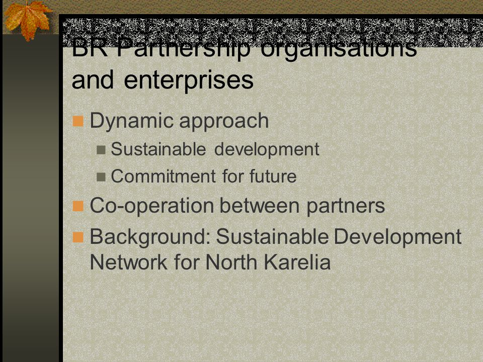 BR Partnership organisations and enterprises