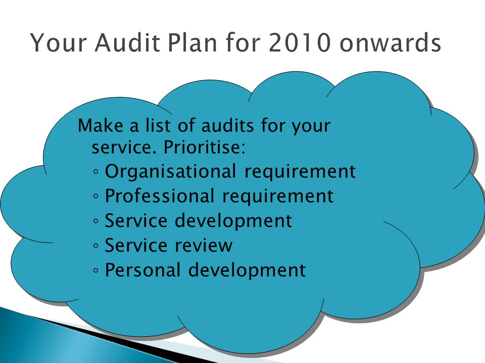 Your Audit Plan for 2010 onwards