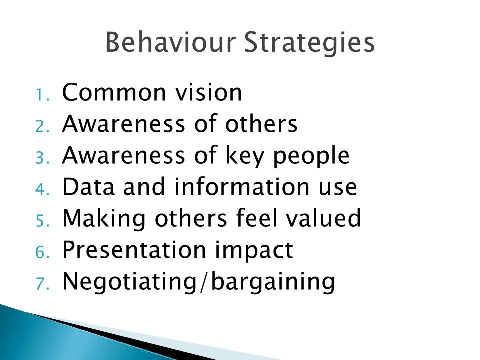 Behaviour Strategies Common vision Awareness of others
