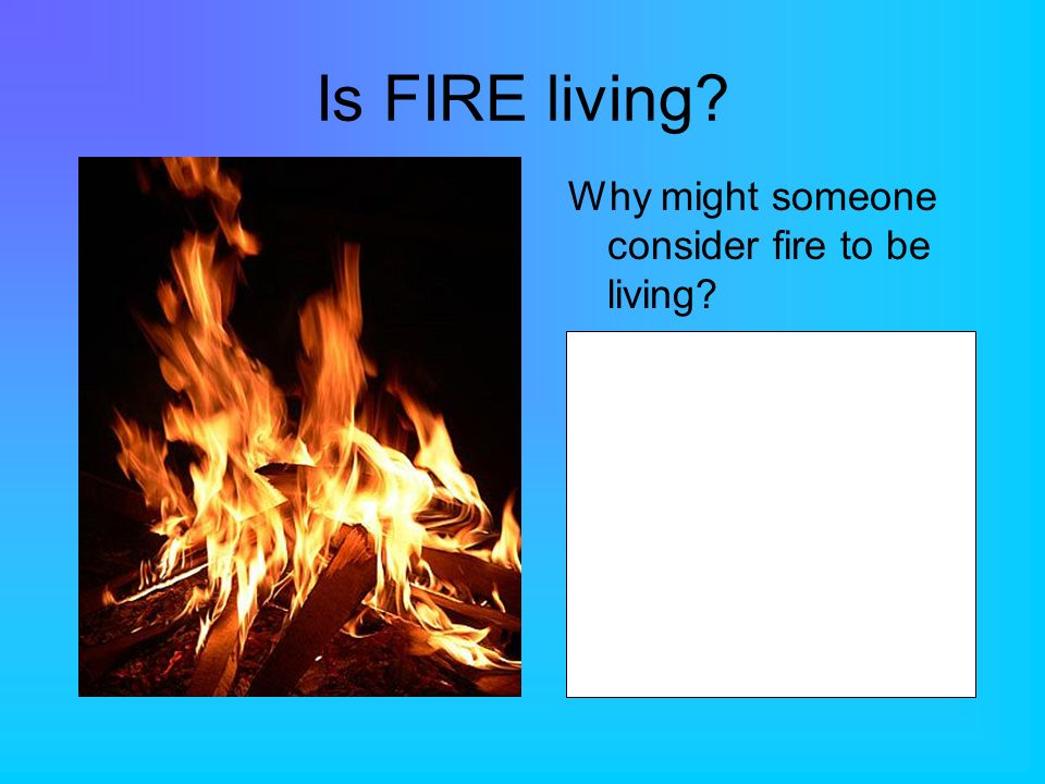 Is FIRE living Why might someone consider fire to be living