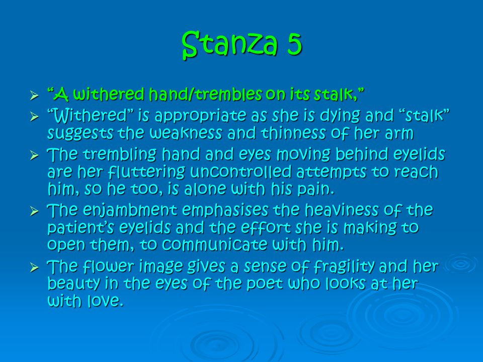 Stanza 5 A withered hand/trembles on its stalk,