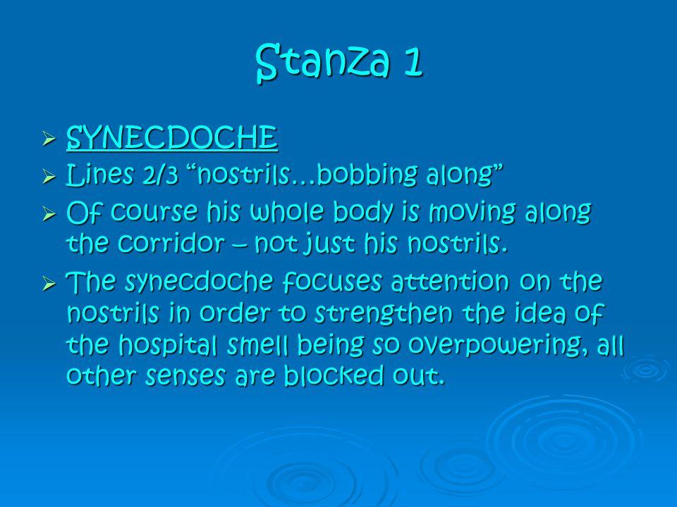 Stanza 1 SYNECDOCHE Lines 2/3 nostrils…bobbing along