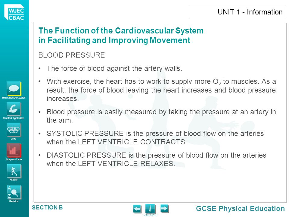 UNIT 1 - Information BLOOD PRESSURE. The force of blood against the artery walls.