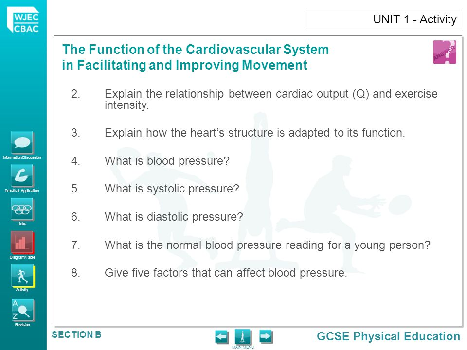UNIT 1 - Activity Explain the relationship between cardiac output (Q) and exercise intensity.