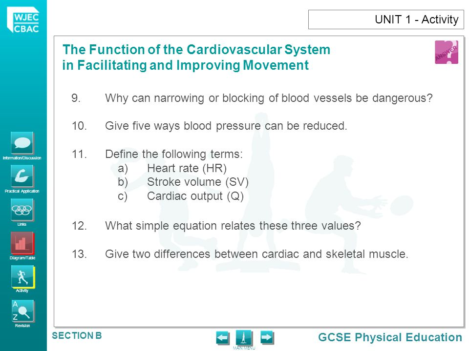 UNIT 1 - Activity Why can narrowing or blocking of blood vessels be dangerous Give five ways blood pressure can be reduced.