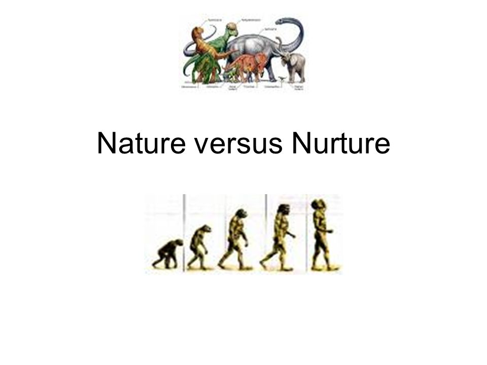 nature or nurture which is more Leadership traits that are a combination of nature and nurture  some people  are naturally more reserved and in control than others, but one.