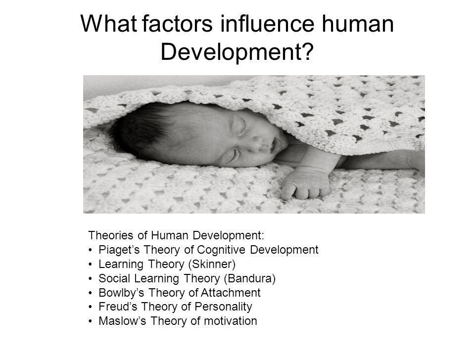 What factors influence human Development